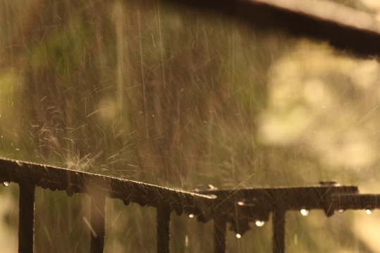 rain on railing