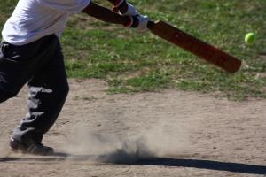 cricket CONTACT