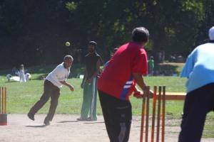 cricket pitch 3