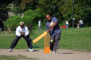 cricket pre-SMASH