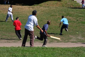 cricket RUN