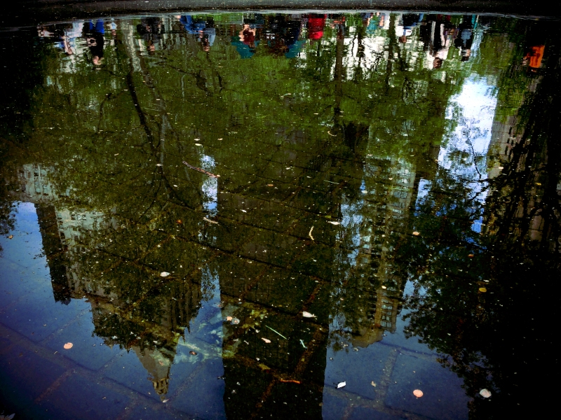 madison sq park reflection