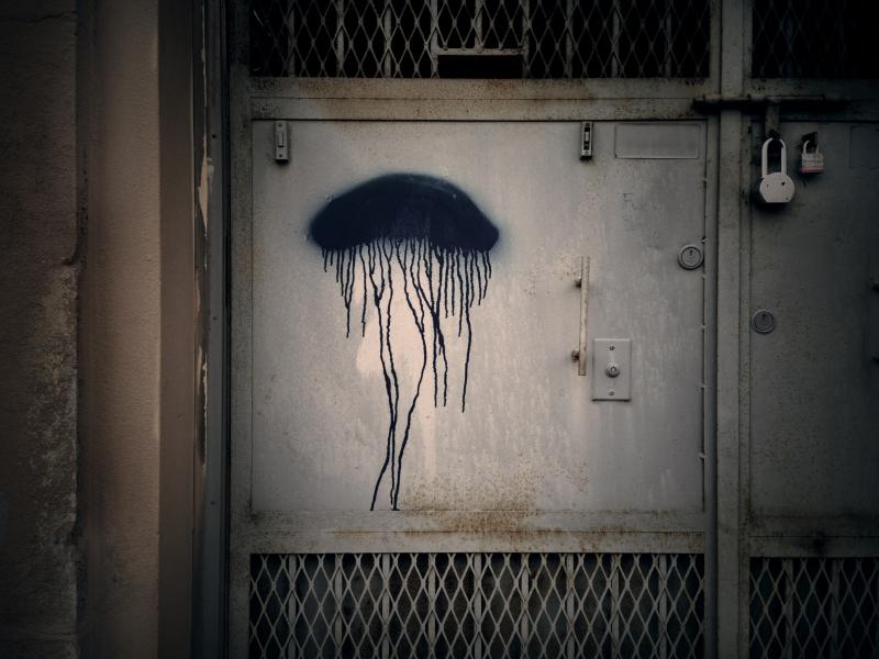 jellyfish copy