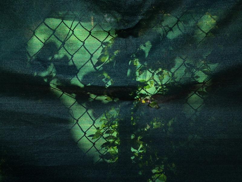 shadow fence copy