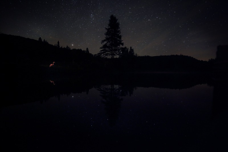peacham night pond