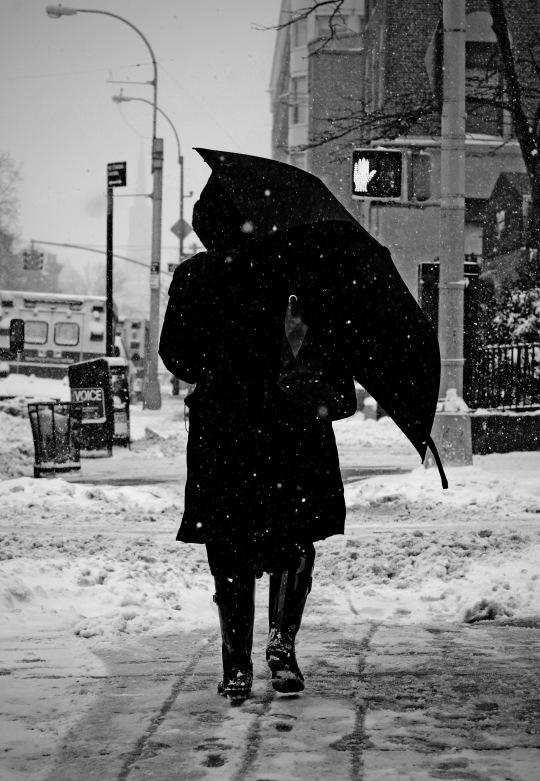 snowbrella 2