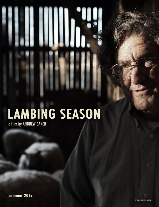 lambing season poster